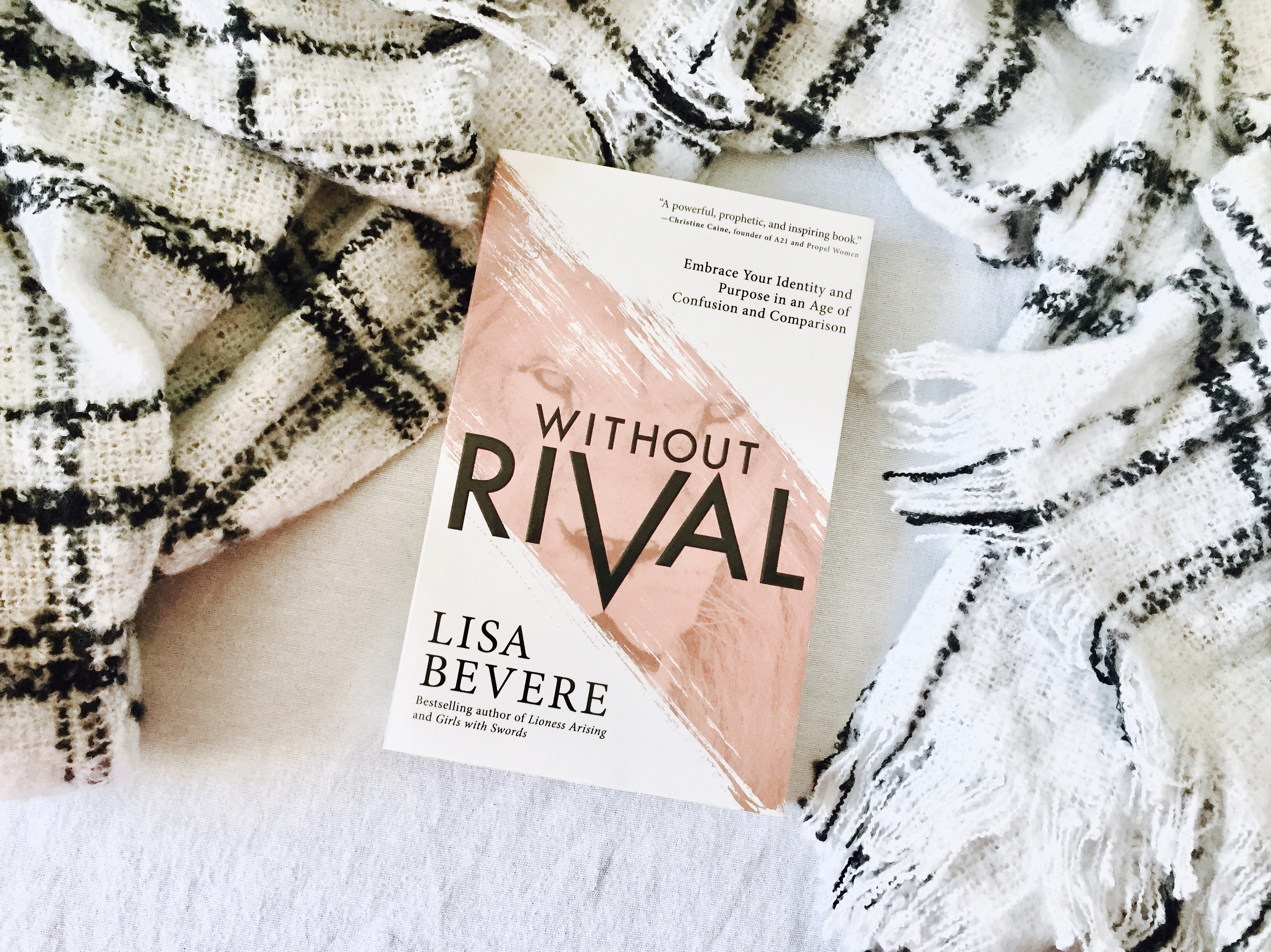 without rival lisa bevere reading winter lazy day