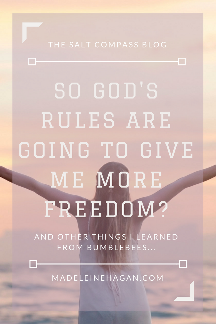 So God's Rules Are Going To Give Me More Freedom?