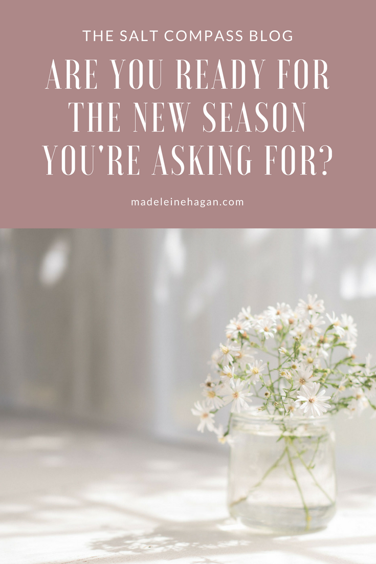 New Wine, Spring and Sunshine: Are You Ready For the New Season You're Asking God For?