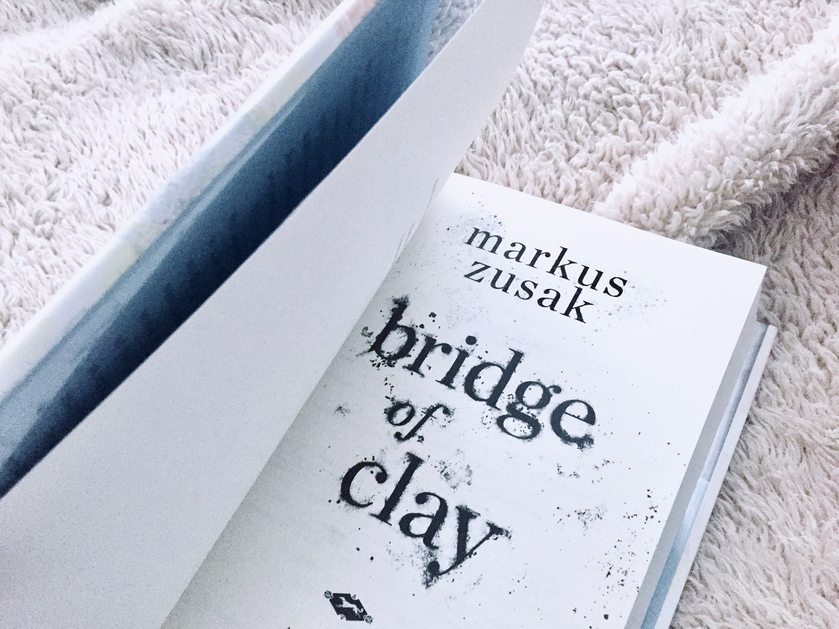 Bridge of Clay by Markus Zusak: Review on The Salt Compass Bookshelf