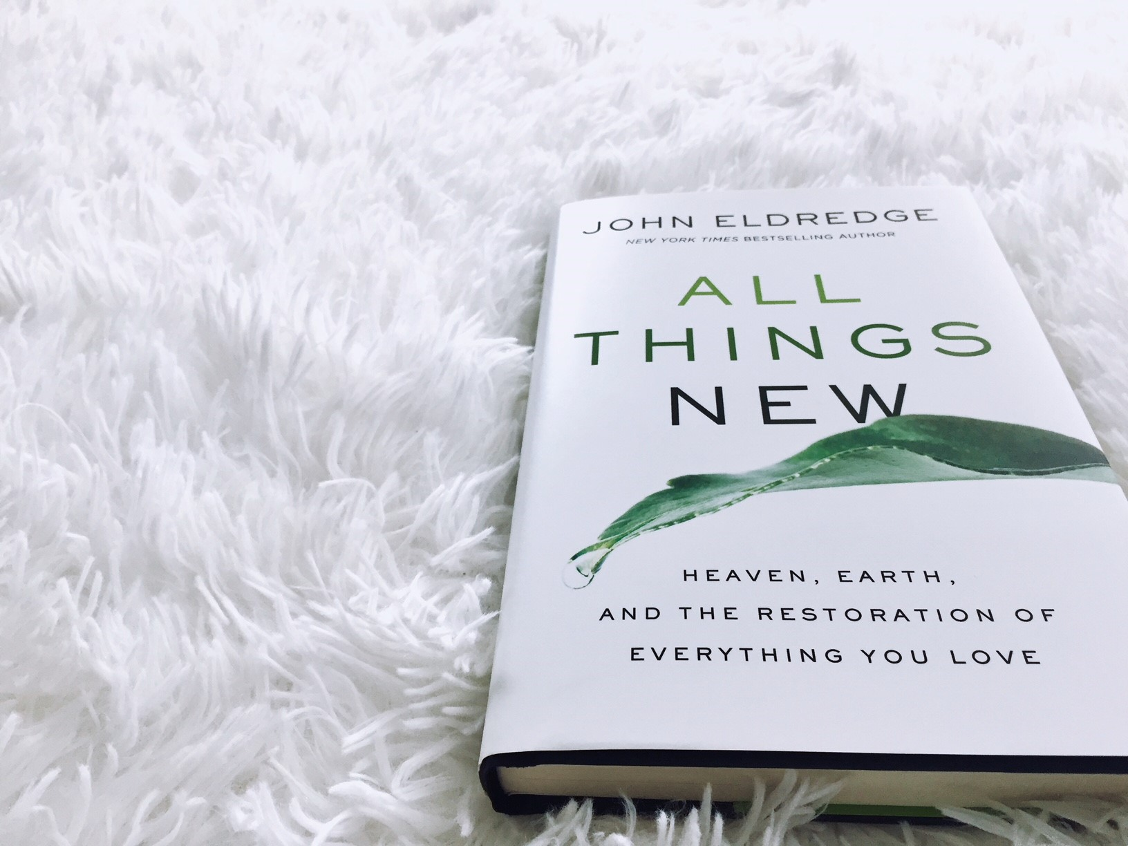 All Things New: Heaven, Earth, and the Restoration of Everything You Love by John Eldredge