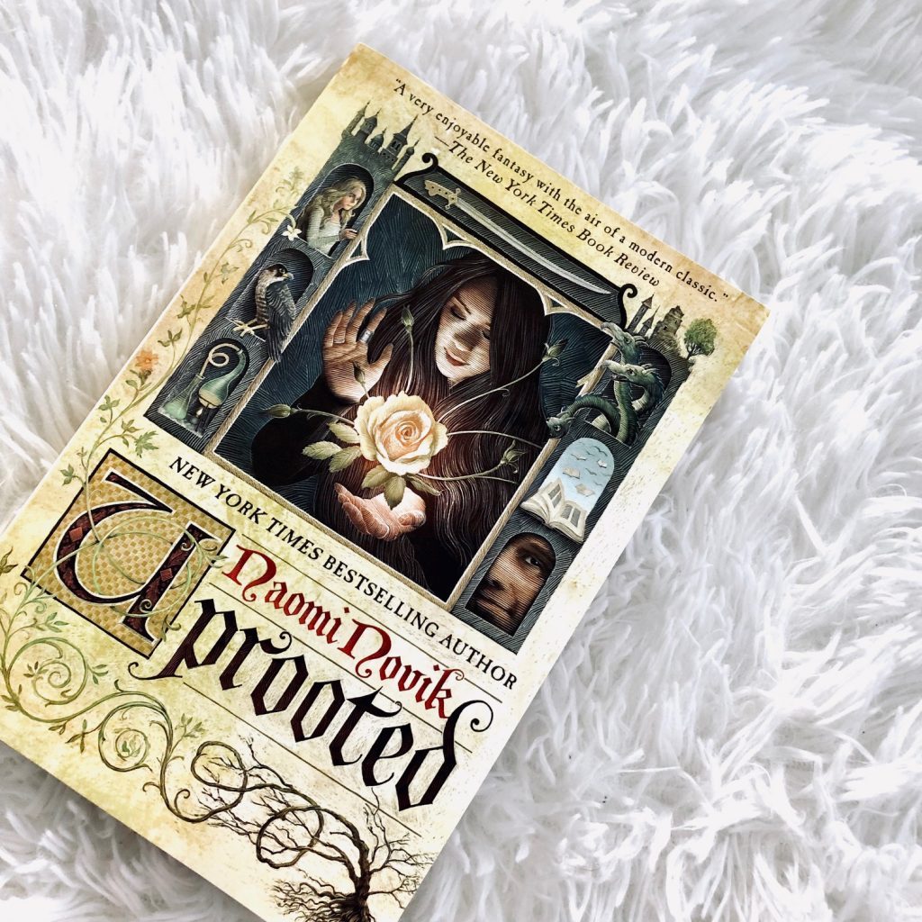Uprooted by Naomi Novik - Top Books in 2019